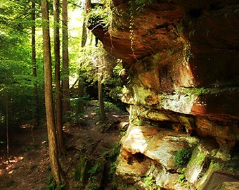 Cliff in the Forest at Hocking Hills Park Landscape Photography