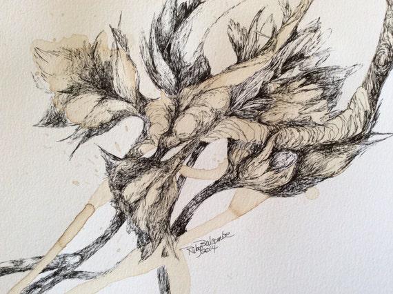 Umetnost crtana kafom i mastilom Il_570xN.649499605_j48c
