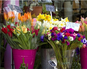 Paris photography, Paris Market Flowers, 8x10 fine art photography print