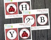 Ladybug Party Banner - Ladybug Birthday
