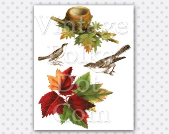 Vintage Autumn Graphics Bird Nest Fall Leaves Birds Clipart Printable Digital Collage Sheet Instant Download Scrapbooking