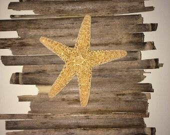 Sugar starfish with bamboo wall decor
