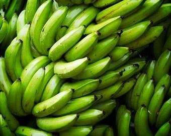 Fresh (Freshly-Harvested Bananas)