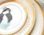 Beautiful Gold Magpie Plate, Bird Dish, Bird Plate, Avian Plate, Bird Crown Dish, Nature Plate, Customizable, Foodsafe & Durable, Bird China