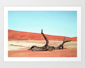 Desert Photography Print.
