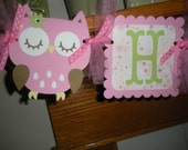 Owl Happy Birthday Banner Matching Tissue Pom Poms Are Available