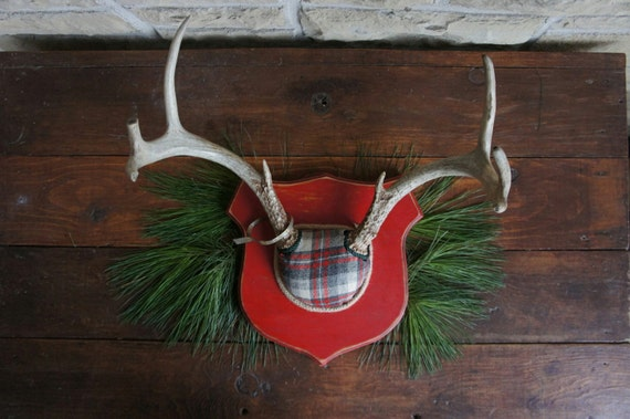 Vintage Deer Antler Mount  Red Gray Plaid  Woodland Decor Christmas Holiday Unique Taxidermy Wall Art