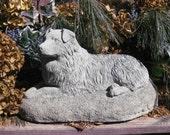 Australian Shepherd Concrete Statue