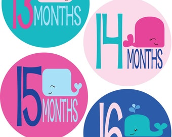 Monthly Stickers - Whale Theme - Baby GIRL Shower or New Mom gift - Document Baby Girl's 13-24 Months w/ this adorable photo prop