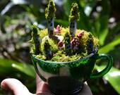 Mountain side fairy village in a vintage tea cup fairy garden