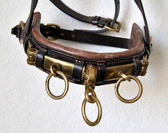 SALE 45% OFF Horse Leather Pony Lunging, Halter Saddle Harness Equestrian Brass Rein Terrets Western Cowboy Hermes Equitation Eclectic Decor