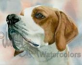 "Pointer, Brown & White, AKC Sporting, Hunting Gun Dog, Pet Portrait Dog Art Watercolor Painting Print, Wall Art, Home Decor, ""Bird Dog"""