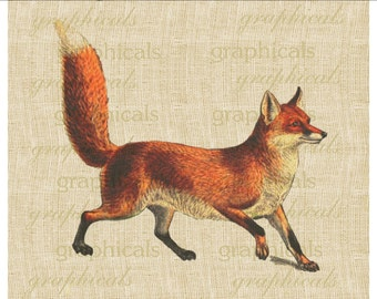 Red fox Woodland animal Instant digital download image for iron on fabric burlap transfer decoupage scrapbook paper pillow tag Item No. 2067