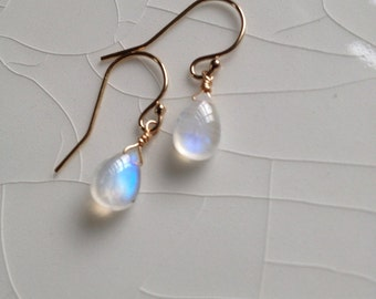 Free Shipping - Small, Smooth Rainbow Moonstone Pear/Briolette Drop Gold-Filled Dangle Earrings