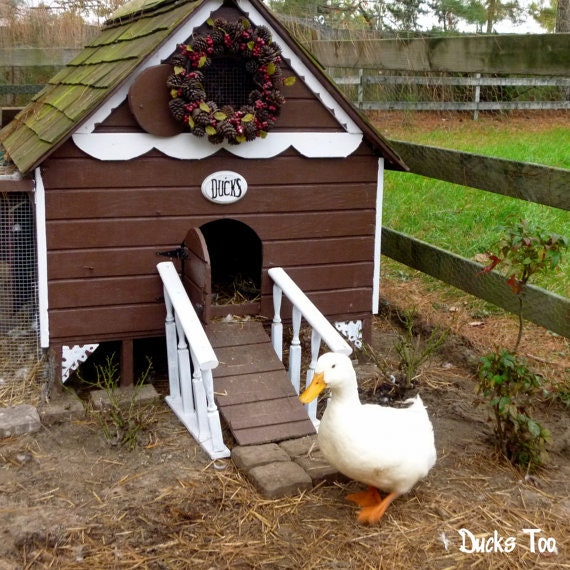 Gingerbread duck house plans pdf room in coop for up to 6 for Duck hutch ideas