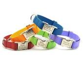HEAVY DUTY Webbing Dog Collar with Laser Engraved Personalized Buckle