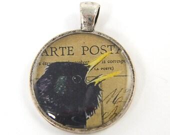 Raven Pendant, Crow Pendant, Black Bird Jewelry Charm