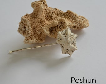 Seashell Hair Accessories ... Shell Bobby Hairpin (1162)