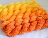 "Gradient Mini Skein Set - ""Saffron Tiger Lily"""