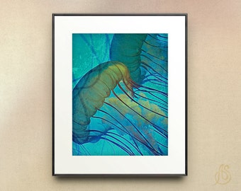 Jellyfish Art // Sea Life // Teal Blue Jellyfish // Ocean art // Home Decor // Fine Art Photograph // 8x10 11x14 Print