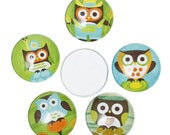 5 Glass Dome Cabochons - Assorted Owl Halloween Pattern - Flat Back - Round - 20mm  - Ships IMMEDIATELY from California - C226