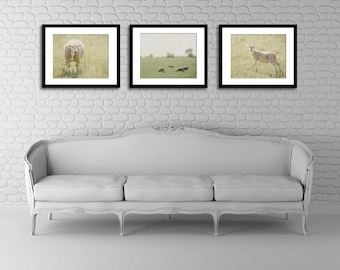 Farm Photography Set, Sheep Picture, Country Wall Decor, Rustic Photograph Set, Three Picture Set, 8x10 Photo Set
