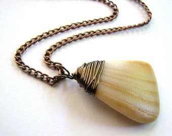 Sea Shell Jewelry - Copper Wire Wrap Necklace, Shell Necklace, Beach Pendant, Eco Friendly Jewelry, South Padre Island Shell