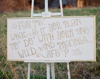 Tell me what it is you plan to do with your one wild and precious life