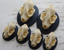 Bat Skull Cameo Cabs Resin Cabochon Taxidermy Animal Steampunk Gothic Goth Skull Black Ivory 40x30mm and 25x18mm 6 PIECES