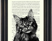 Harry Potter Book Print Cat Print Upcycled Book Page Crookshanks Potter Fandom Harry Potter Gift Harry Potter Wall Art