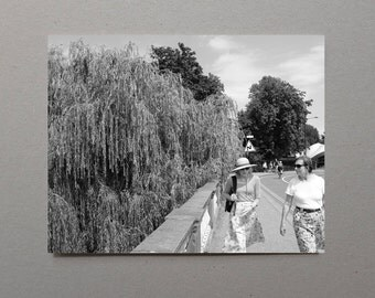 Ladies Talking Weeping Willow Road Fine Art Photography Print Street Photography Home Wall Decor Home Wall Art Black and White Wall Art Gift
