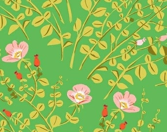 Heather Ross Briar Rose for Windham Fabrics - Nanny Bee Green - 1/2 yard cotton quilt fabric 516
