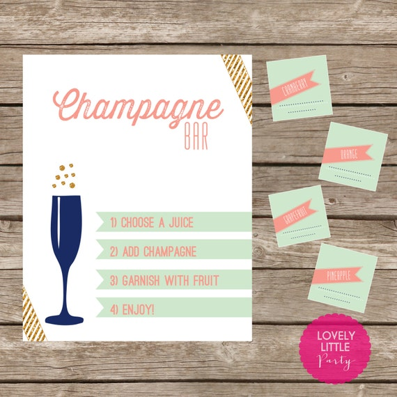 DIY 6 piece Champagne Bar Kit - Printable- You Choose Color - Lovely Little Party