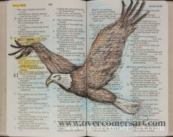 Isaiah 40 They shall mount up with wings like eagles