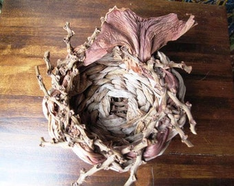 Small Rustic Handwoven Basket, Tropical, Natural Palm twigs, Philodendron Bract,  Leaves, Twiggy, Woodsy, Outdoors in, Woodland