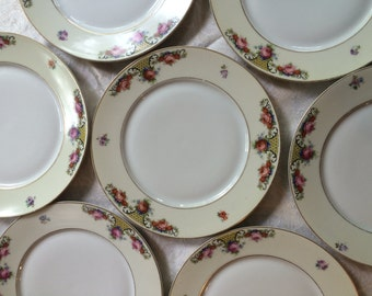 Stunning set of 6 Barvaria Dinner Plates with Pink Roses, H.J.Co, Hertel Jacob and Co. Bavaria China