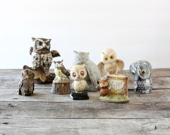 Owl Figurines - Collection of 8