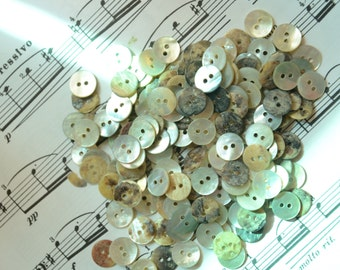 Lot of 40 pcs vintage shell Buttons