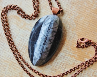 """Orthoceras Fossil Stone Pendant Necklace 24"""" Antiqued Copper Rolo Chain Bail Lobster Claw Clasp"""
