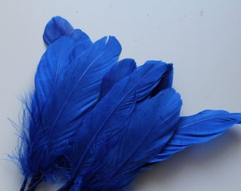 Royal Blue Goose Nagoire Feathers / 10 Loose Feathers / 4-6 inches