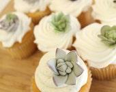 Edible Fondant Sugar Flower SUCCULENTS - 48 mini succulents,  for wedding cake, modern wedding