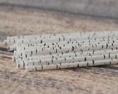 Birch Tree Paper Straws - Set of 25