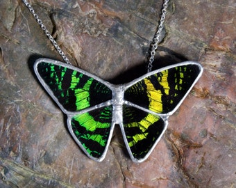 FREE SHIPPING  Real Whole Butterfly Encased in Hand Cut Glass and Soldered Pendant Necklace