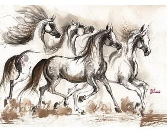 Framed original Arabian horses ink painting