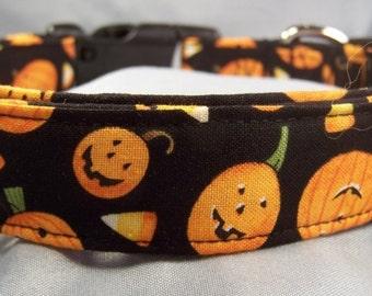 Pumpkins and Candy Corn Halloween Dog Collar