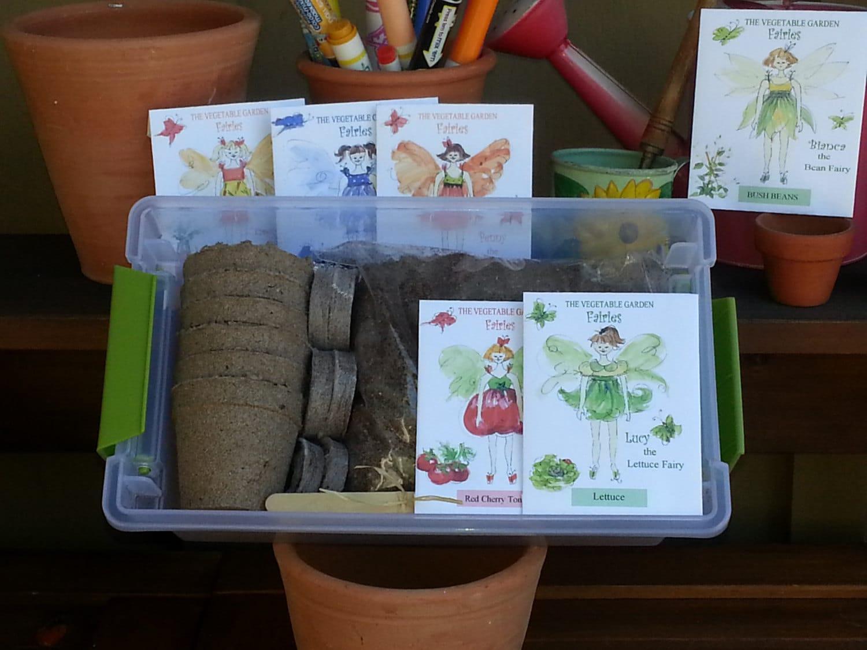 Fairy Garden kit garden seed kit for kids fairy by TheGiftedTomato