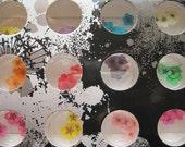 OD-17 Wholesale 12 colors per set Dry Flower Nail Art Decoration Nail Art Glitter Decoration
