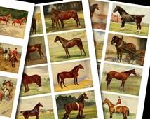 Horses Digital Collage Sheet - Instant Download printable Vintage Horses  Illustrations for ATC, Digital Tags, Magnets no.147
