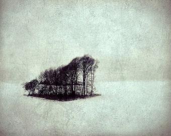 Cold frozen valley landscape print, winter trees, sombre melancholic dreamy, Scandinavia, tourquoise mint fine art photographic print