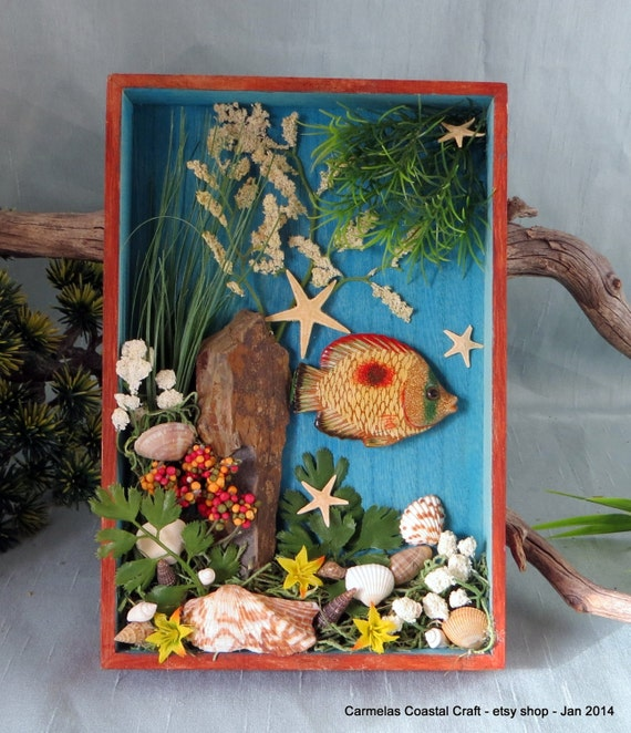 Items similar to tropical fish and sea shell shadow box for Beachy decor items